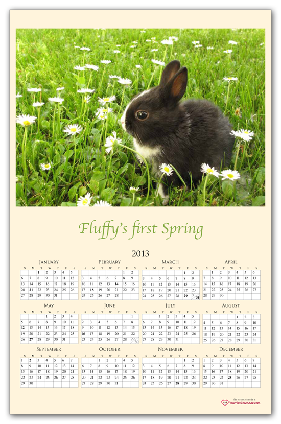 pet calendar with photo of rabbit